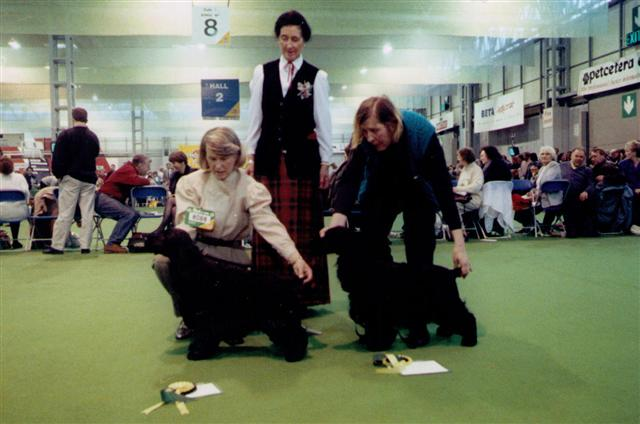 albert rcc crufts 1994