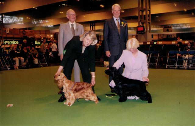 c hopelessly devoted bbp crufts 2000