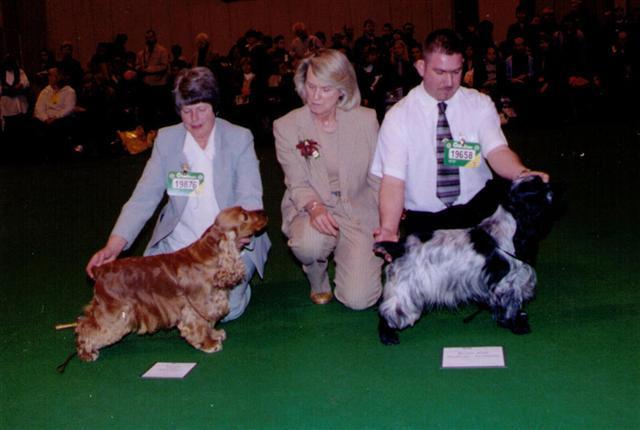 trica judging crufts 2002
